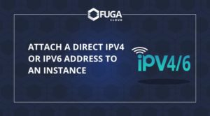 How to directly attach an IPv4 or IPv6 address to my instance